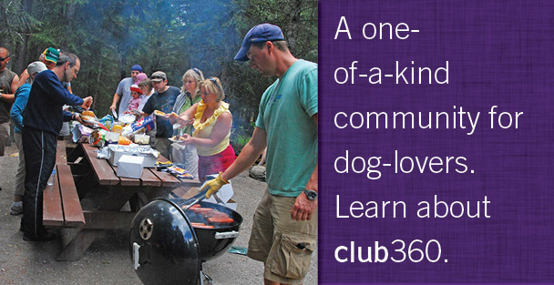 clevercanines club360