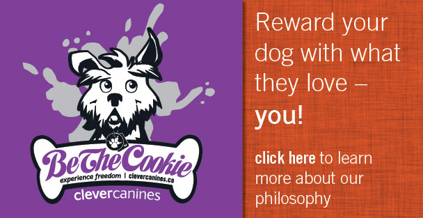 clever canines philosophy
